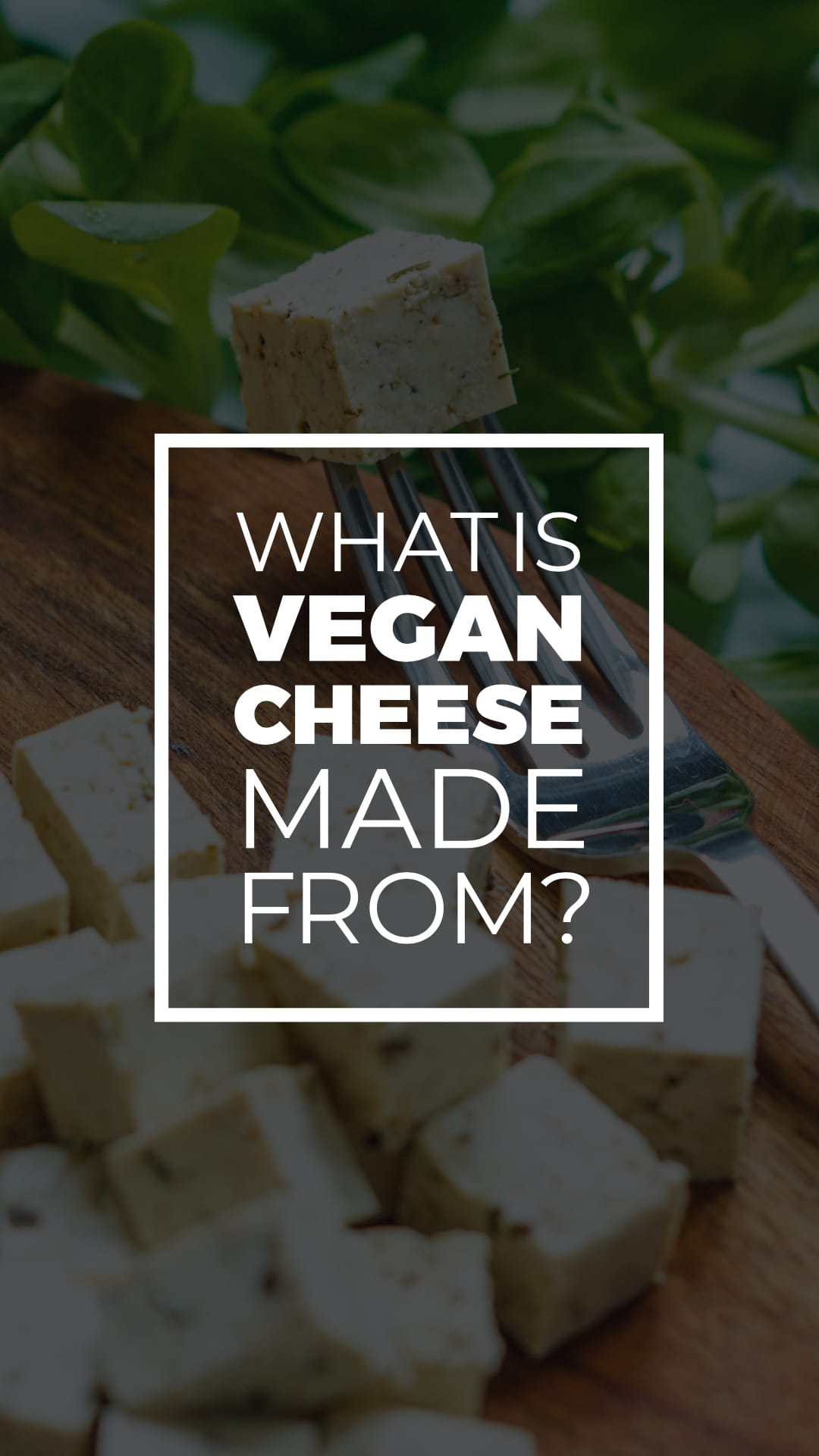 What Is Vegan Cheese Made From?