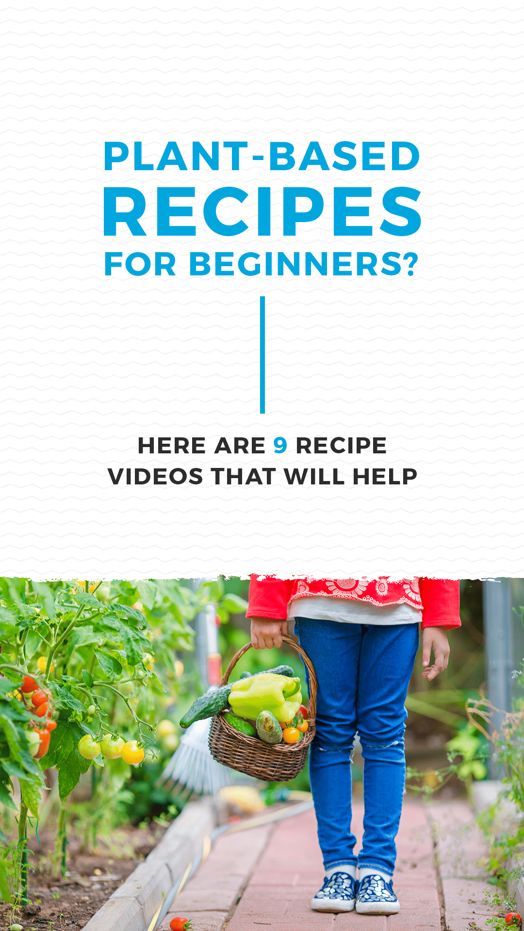 Plant-Based Recipes for Beginners? Here Are 9 Recipe Videos That Will Help