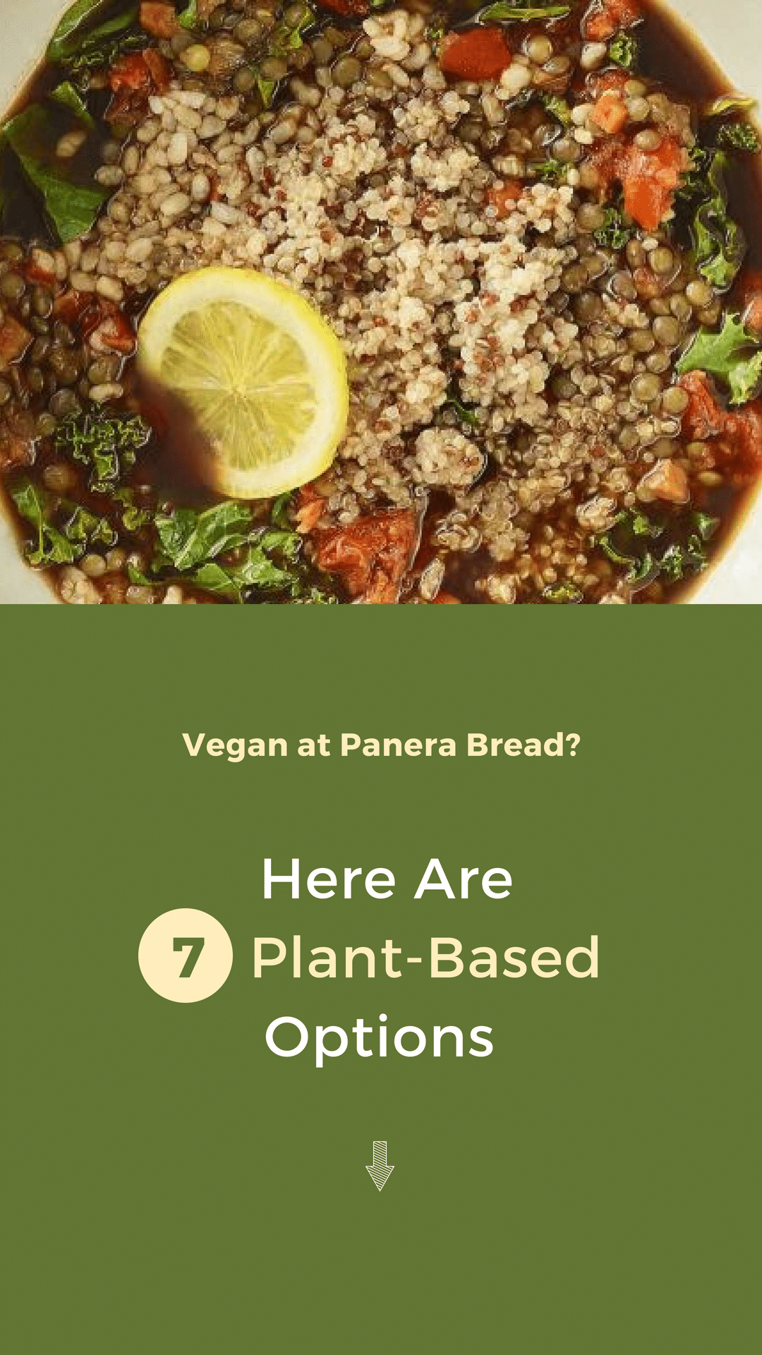 Vegan at Panera Bread? Here Are 7 Plant-Based Options