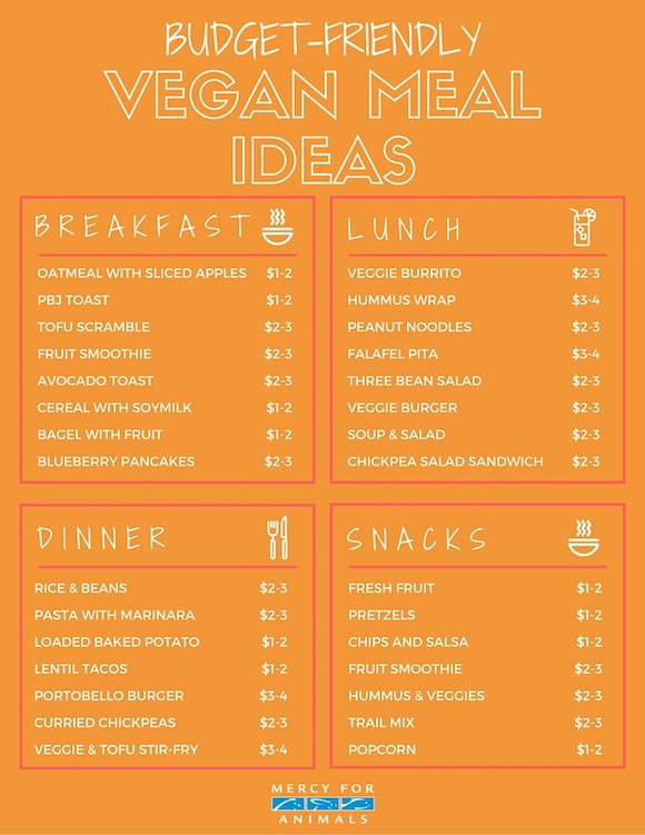 starter vegan diet plan