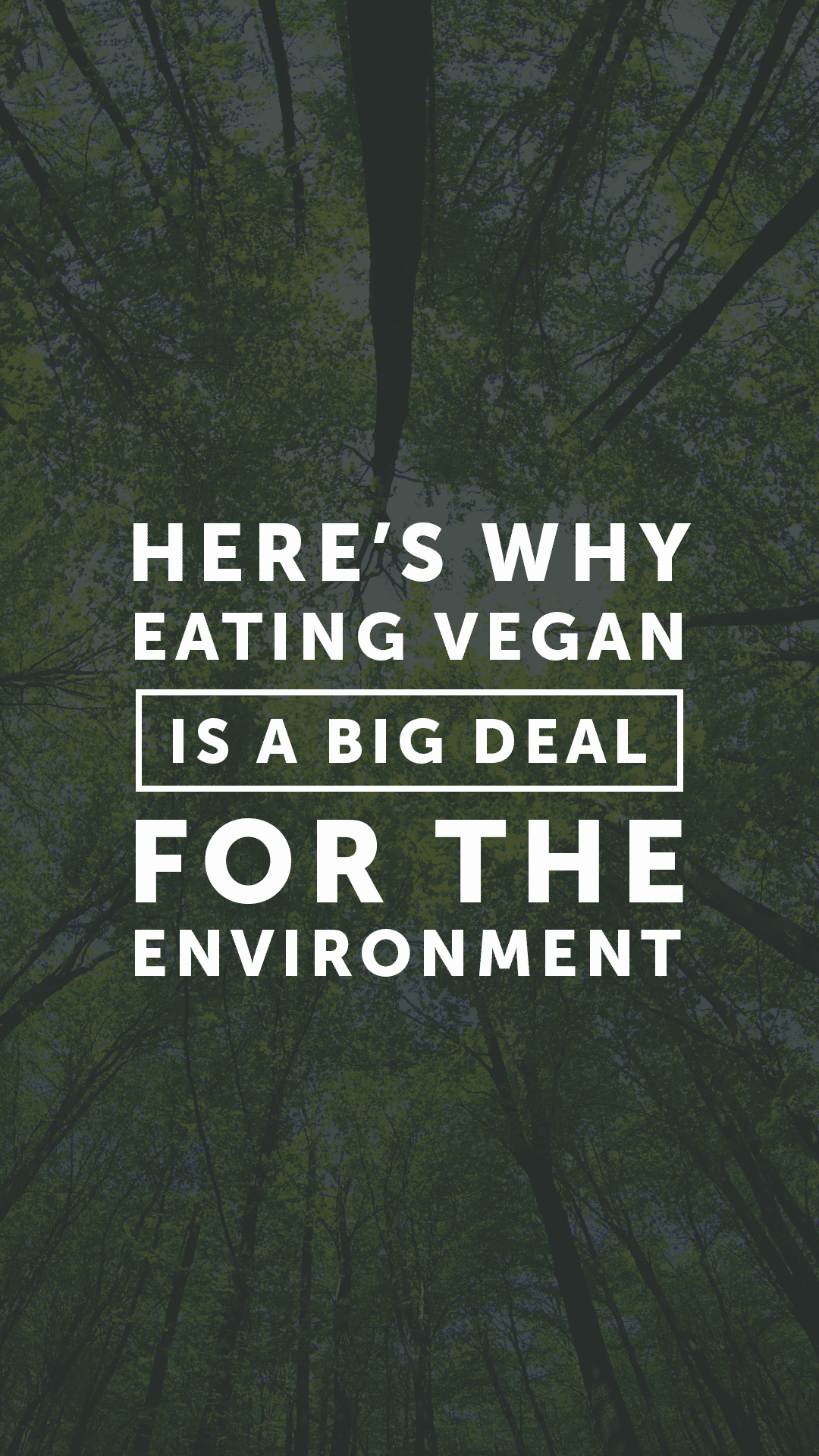 Eating Plant-Based Is One of the Best Things You Can Do for the Planet