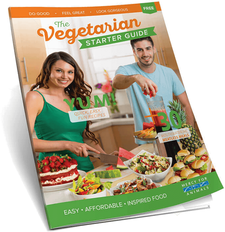 Get Your Free Vegetarian Starter Guide