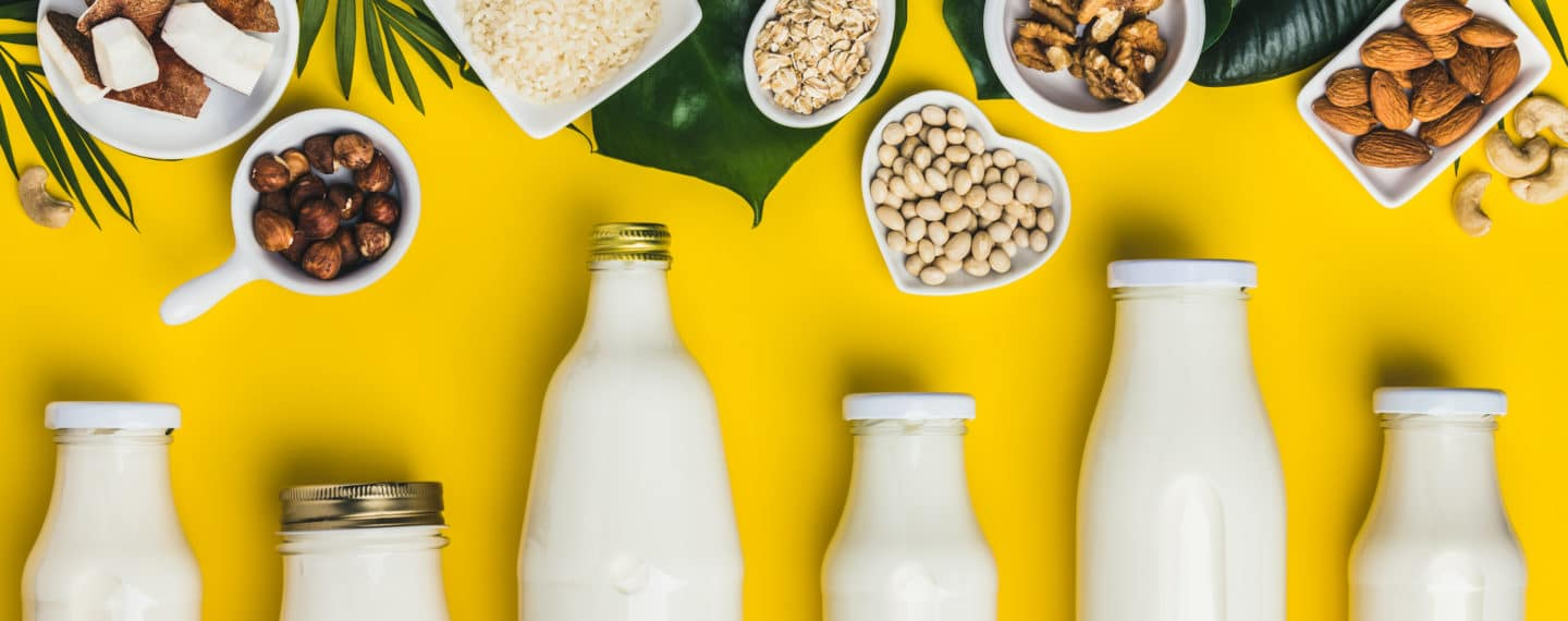 Got Milk? Here Are 7 Dairy-Free Brands You Should Check Out