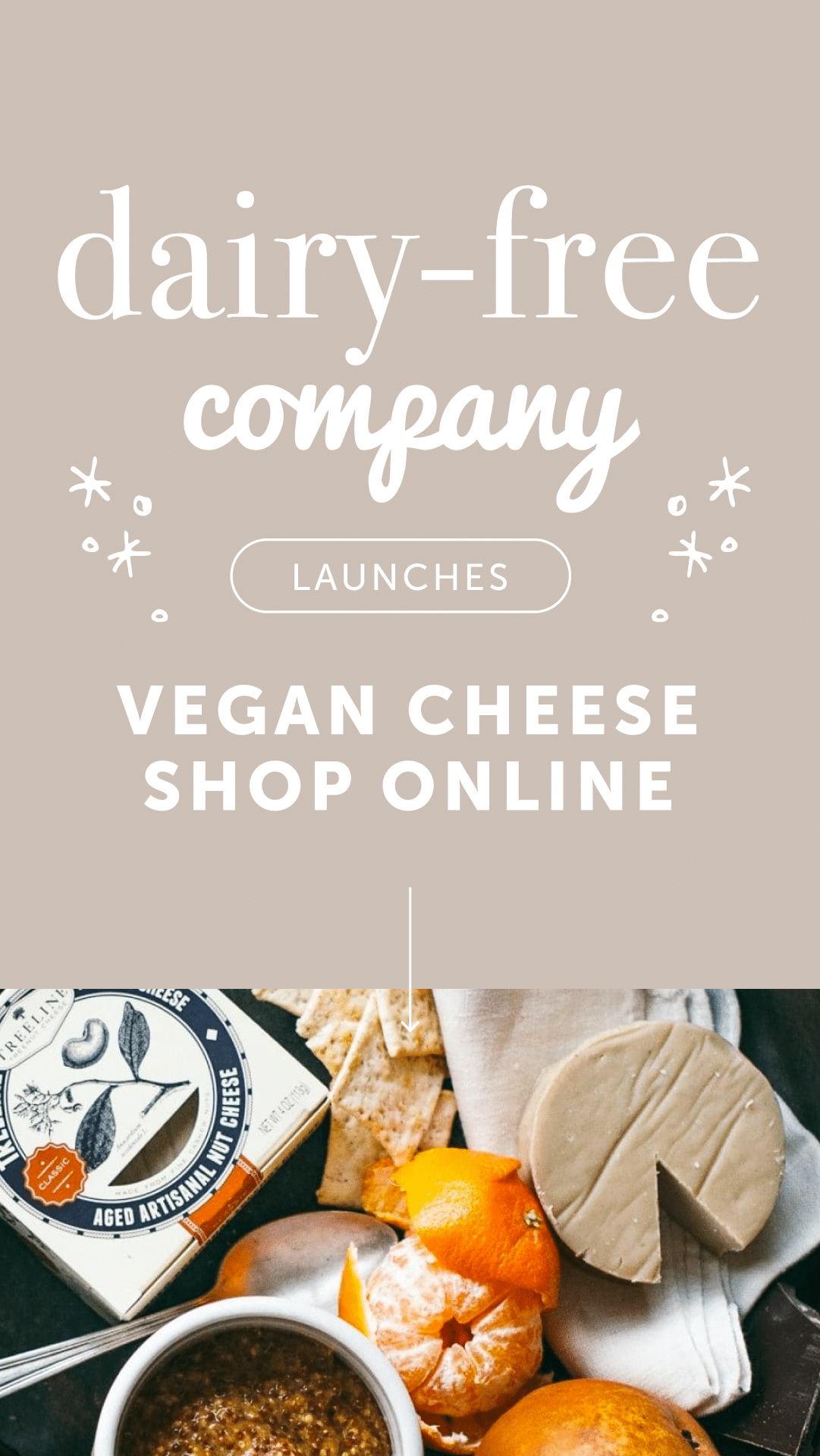 Dairy-Free Company Launches Vegan Cheese Shop Online