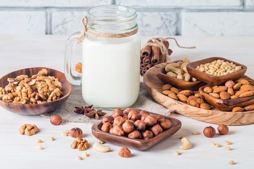 Guía completa para preparar leches vegetales en casa