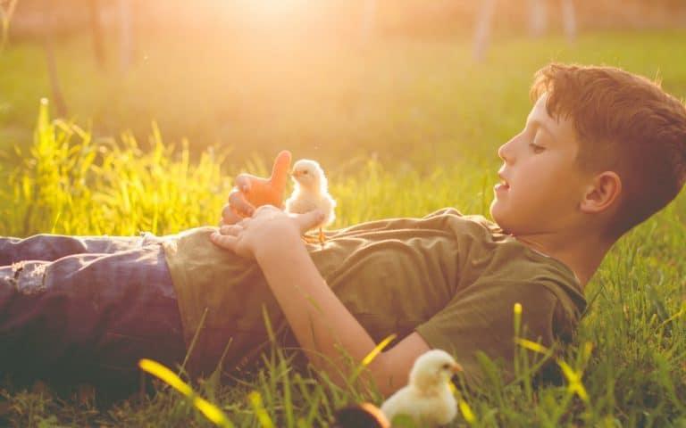 Estos niños que no quieren comer carne nos recuerdan que todos nacemos con compasión