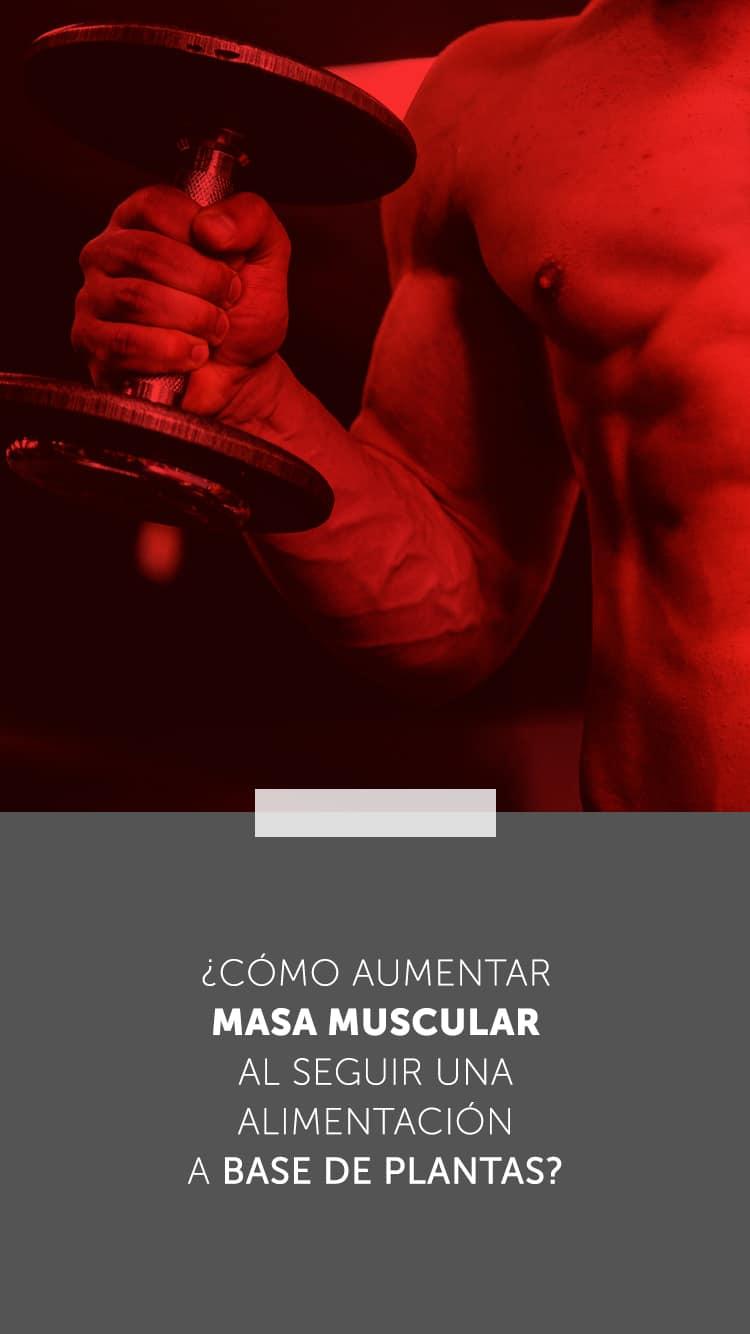 ¿Cómo aumentar masa muscular al seguir una alimentación a base de plantas?